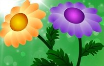 backgrounds,beauty,in,nature,color,image,field,flower,flower,bed,multi,colored,nature,spring,summer,tulip