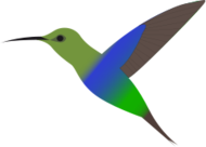 kolibri,vogel,kolibri,vogel,bird fly