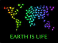 earth,environment,animal,life,zoology,zoosphere,globe,map,biology,silhouette,nature,neon,poster,decoration,motivation,planet,ecology
