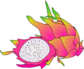 pitaya,dragon fruit
