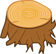 tree,stump,trunk,wood,wooden