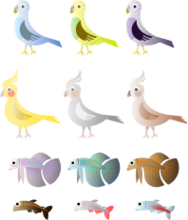 fish,bird,stylised,budgie,cockatiel,tetra,betta