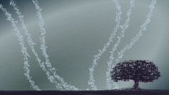 tree,sky,dark,moody,emo,background,desktop,900,1600,art,sketch,abstract,plant,silhouette,fall,winter,autumn