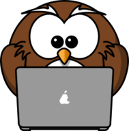 owl,cartoon,bird,funny,animal,notebook,laptop,computer,pc,portable device