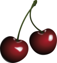 cherries plastic not realistic