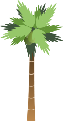 plant,nature,palm,tree,coconut,media,clip art,public domain,image,svg