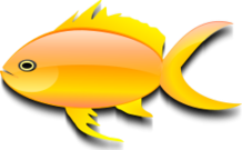 goldfish,nature,animal,fish,media,clip art,public domain,image,png,svg