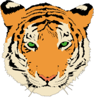 animal,mammal,tiger,feline,head,cat,media,clip art,public domain,image,png,svg