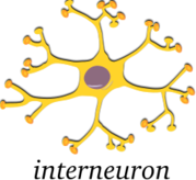 media,clip art,public domain,image,png,svg,anatomy,cell,neuron,medicine,medical,physiology,biology,science