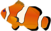 animal,fish,aquarium,colour,no contour,media,clip art,public domain,image,png,svg