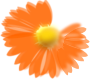 flower,blume,orange,blurr,realistic,media,clip art,public domain,image,png,svg,inked
