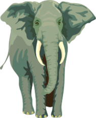 media,clip art,public domain,image,svg,animal,mammal,elephant,standing,colour,gray