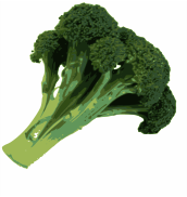 broccoli,green,vegetable,food,healthy