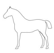 line drawing,line art,horse,animal,black and white,b & w