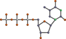 chemical,science,chemistry,biology,ttp,dttp,thymidine triphosphate,nucleotide,dna,pyrimidine