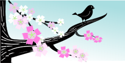 spring,bird,flower,tree,branch,spring2010