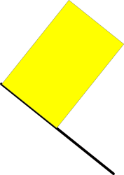 yellow flag,racing,race,car,automotive,sport,danger