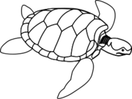 public domain,png,svg,turtle,green,animal,reptile,ocean,sea creature,black and white,line art,outline,coloring book