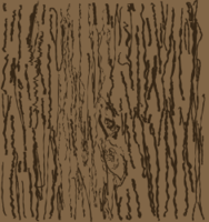 wood,floor,branch,tree,texture