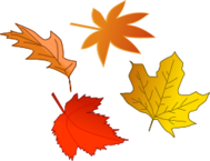 fall,autumn,tree,field,leaf,maple,oak,sweetgum,shade