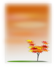 autumn,season,fall,tree,sky,scenery