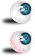 eyeball,eye,blue,blood,human,mh,image,svg,media,clip art