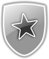 shield,icon star,security,strength,emblem