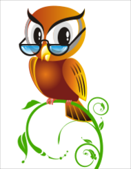owl,bird,anthropomorphized,cartoon,smart,wise,glasses,spectacle,perched,spectacle