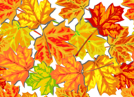 automne,automne,feuille,tuile,tiled,feuillage,lumineux,feuille