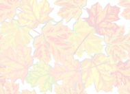 fall,autumn,leaf,tile,tileable,foliage,maple,faded