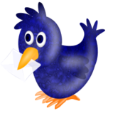 twitter,envelope,bird,twitter,envelope,bird