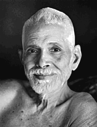 ramana,maharishi,trace,indian,photo,portrait,svg,vector,inkscape