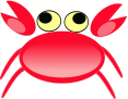 crab,animal,granchio,animale