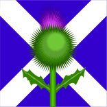 scotland,flower,alba,bonnie,flag,patriotic,scottish,scotland,scottish