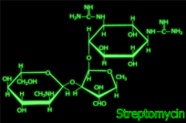 streptomycin,structure,neon,chemical,formula,science,biology,antibiotic,bacteria,medicine,svg,png
