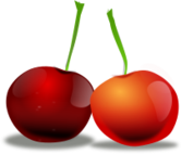 cherry,fleshy stone fruit,prunus,natural diet,fresh fruit,red fruit,nature,cherry,fresh fruit,photorealistic