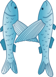 fish,flying fish,letter,m,cartoon,sea,marine,animal