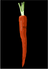 carrot,food,orange,green,purple,vegetable,shaded