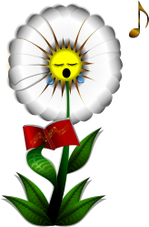 flower,flor,fleur,plant,planta,plante,daisy,margarita,marguerite,pansy,pensamiento,pensée,perennial,perenne,weed,maleza,malezas,mauvaises,herb,seed,semillas,granos,grain,sing,singing,canto,cantando,chant,decorative,decorativo,decoration,decoracion,music,musica,musique,book,libro,coro