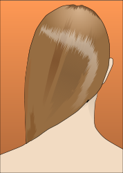 woman,hair,rear view,female,head,brush