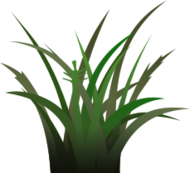 grass,vegetation,sprite,foliage texture