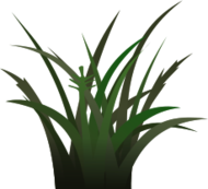 grass,vegetation,sprite,foliage texture,shadow