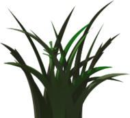 shadow,vegetation,sprite,texture,decal,grass,green,dark