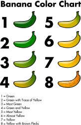 banana,color,chart