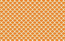 morocan,moroco,pattern,country,element,illustration