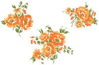 flower,floral,image,illustration,orange,blossom