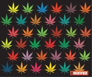marihuana,leaf,background,marijuana,leaf