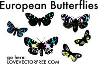 bug,butterfly,stained glass,colorful,insect,fly,butter,pretty,buterflies,stained,glass,colorfu,linsect