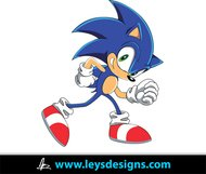 sonic,cartoon,hedgehog,awesome,superhero,popular,comic book,animated,fast,ley's design