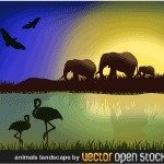 africa,landscape,animal,elephant,water,sky,grass,wilderness,tropical forest,nature,savanna,heat,sun,earth,tree,giraffe,bird,flamingo